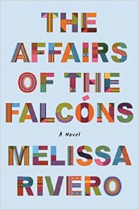 The affairs of the Falcons book cover