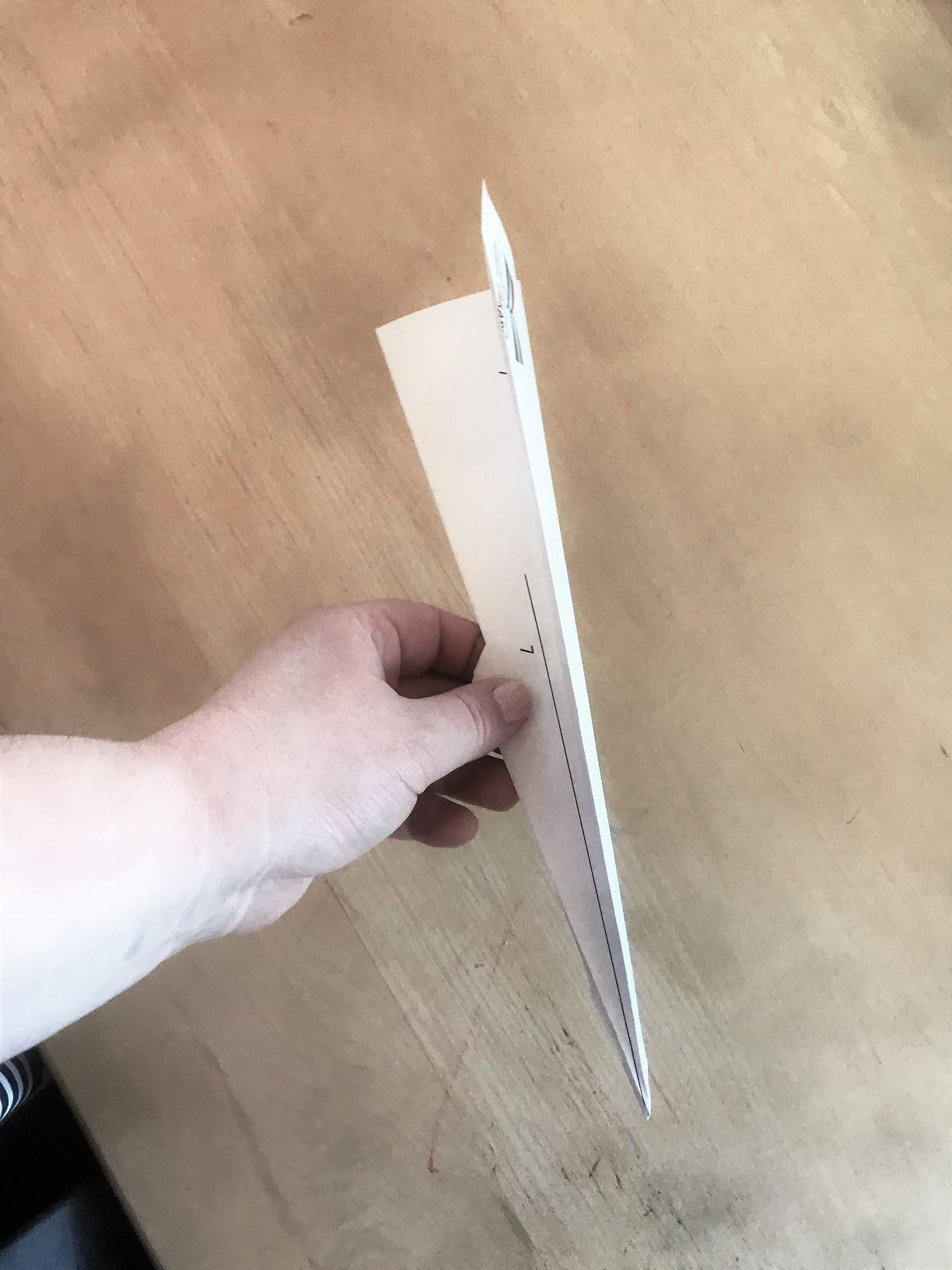 Photo of finished paper airplane
