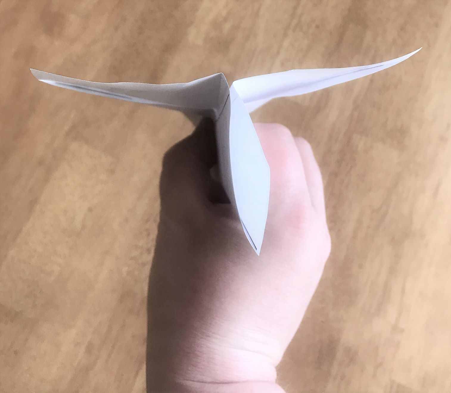 Photo of paper airplane step 6